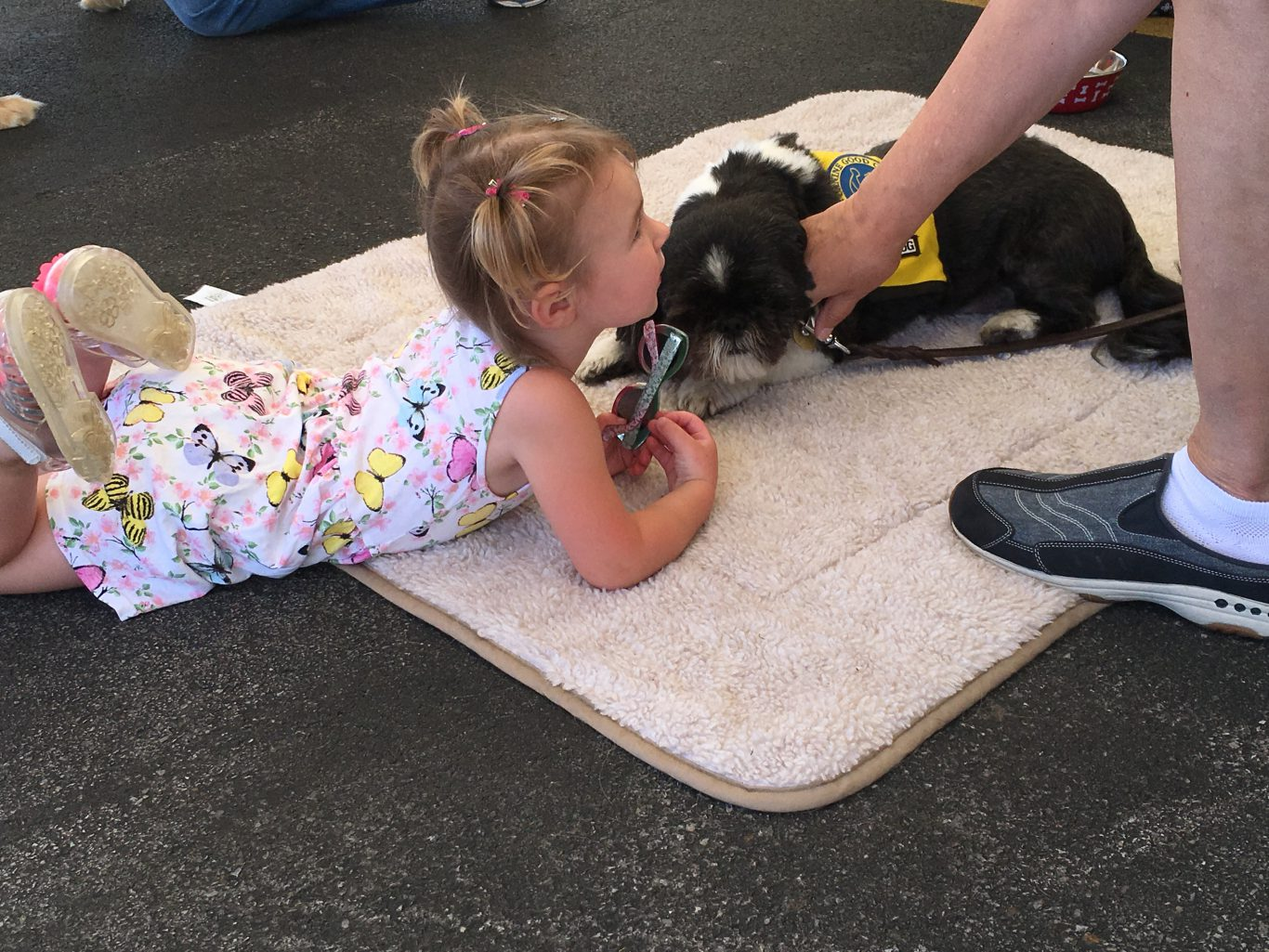 Exelon Nuclear Plant Health and Wellness Fair Therapy Dog and a Girl